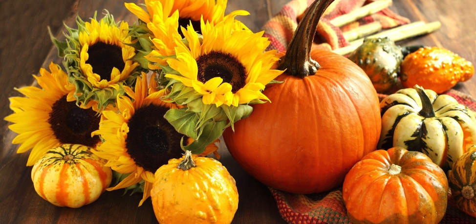 Autumn home decor ideas (part 2)