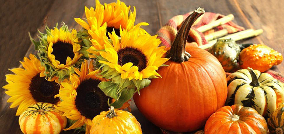 Beautiful autumn decorations for your garden and front porch