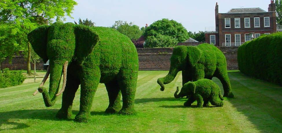 Creative Animal Topiary Ideas