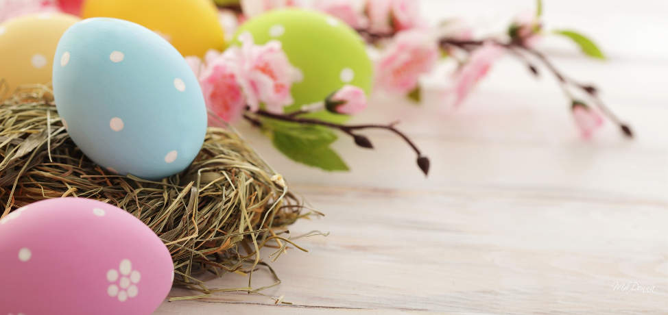 Easter garden decor ideas