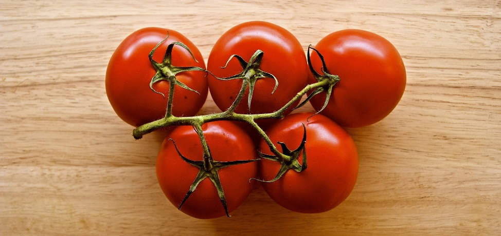 How to grow tomatoes (part 1)