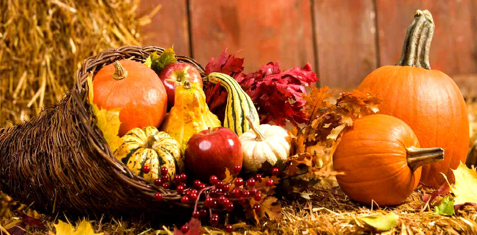 thanksgiving decor ideas for your garden - Thanksgiving Decor